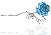 blue-rose-footer